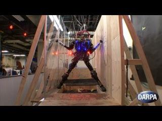 И снова робот от Boston Dynamics — Pet-Proto